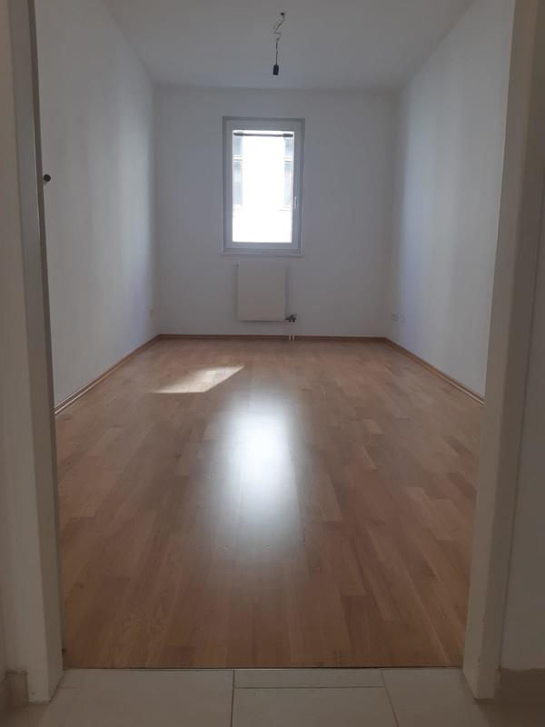 Zimmer_2